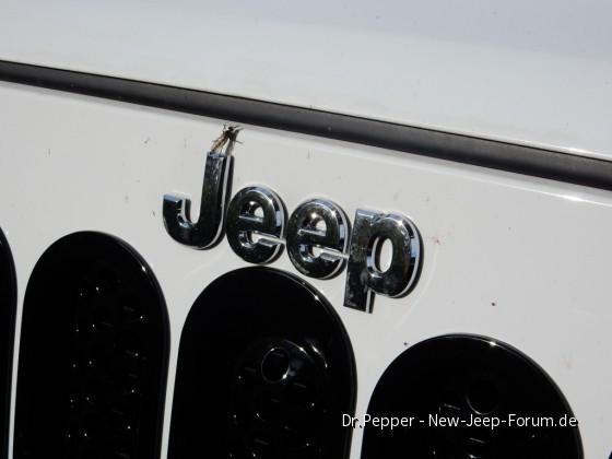 Jeep und Fauna.