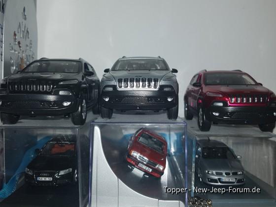 Einige meiner Modelle (von jedem besessenem PKW)