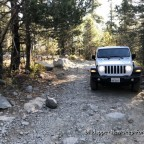 Rubicon- Trail